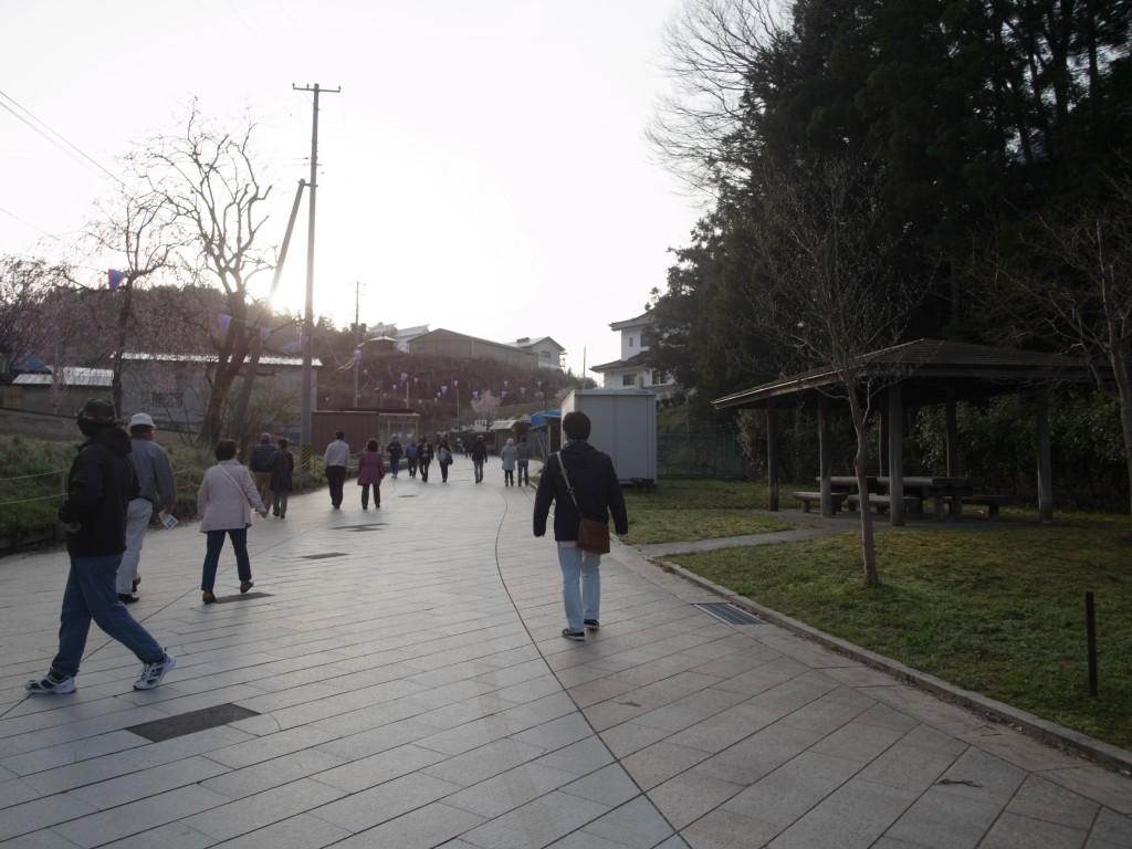 takizakura-road